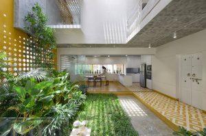 Comedor con apertura y plantas de interiores
