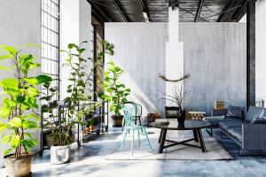 Oficina estilo industrial con plantas